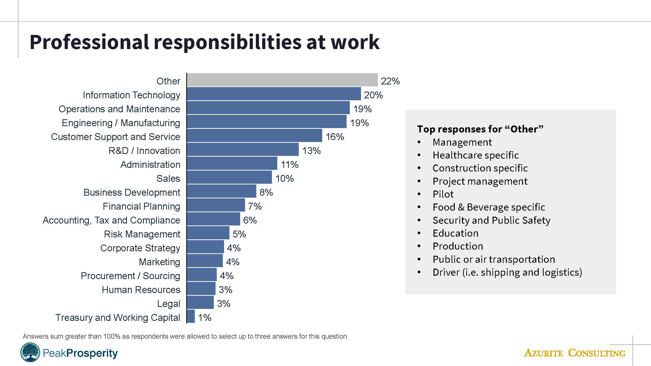 PP professional responsibilities
